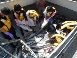 上中漁業 (4)