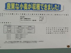 DSCN6422 (800x600)